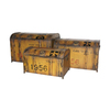Cheung's Set of 3 Rectangular Metal Trunks with Lid
