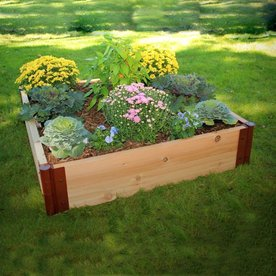 Scenery Solutions 48-in W x L x 12-in H Brown Cedar Raised Garden Bed