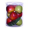 Woodland Imports Large Apple Gift Box