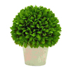 UMA Enterprises 12-in Vibrant Green Ball-Shaped Plant