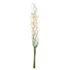 PoliVaz 47-in Green and Natural Cream Bamboo