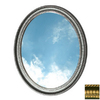 American Pride 31-in H x 25-in W Middleton Gold Oval Bathroom Mirror