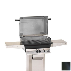 "PGS ""A"" Series Black 2-Burner (40,000-BTU) Liquid Propane Gas Grill"