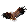 Design Toscano Freedom's Pride Eagle 31-in W x 12-in H Frameless Resin Sculptural Wall Art