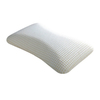 Leggett & Platt Standard/Queen Memory Foam Bed Pillow