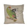 Cheung's 18-in W x 18-in L Apple Green Square Indoor Decorative Pillow