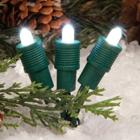 TreeKeeper 50-Count Constant Pure White LED Plug-In Mini Christmas String Lights