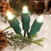 TreeKeeper Warm Clear Lighted LED Super Mini Light Ornament