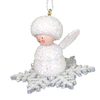 Alexander Taron Snowflake with Sparkles Ornament