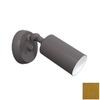 Remcraft Lighting Cylinders Satin Brass Outdoor Wall Light
