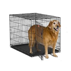 midwest pets 3.5-ft x 2.33-ft x 2.5-ft Black Collapsible Plastic and Wire Pet Crate