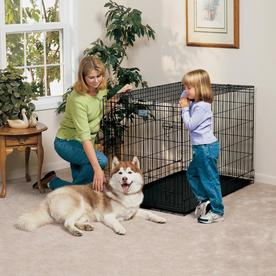 midwest pets 4-ft x 2.5-ft x 2.75-ft Black Collapsible Plastic and Wire Pet Crate