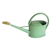 Bosmere 1.32-Gallon Sage Metal Watering Can