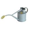 Bosmere Indoor Pot 0.26-Gallon Titanium Metal Watering Can
