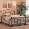Coaster Fine Furniture Antique Brass Queen Bed