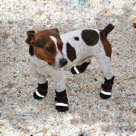 Aussie Naturals Black Fleece Unisex Shoes