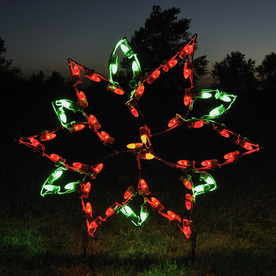 Shop Holiday Lighting Specialists Small Poinsettia