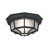 Designer's Fountain Marine Style Lanterns 10.5-in W Black Outdoor Flush-Mount Light