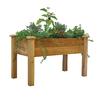 Gronomics 48-in x 30-in Rustic Red Cedar Cedar Rustic Raised Planter Box