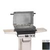PGS A Series 2-Burner (40000-BTU) Liquid Propane Gas Grill