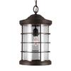 Sea Gull Lighting Sauganash 18.25-in Antique Bronze Outdoor Pendant Light ENERGY STAR