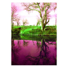 Zuo Modern 38-in W x 54-in H Frameless Canvas Going Up in Life Print Wall Art