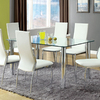Furniture of America Kalawao Chrome Rectangular Dining Table
