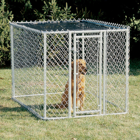 Shop Midwest Pets 6 Ft X 4 Ft X 4 Ft Outdoor Dog Kennel Gates At