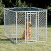 midwest pets 6-ft x 4-ft x 4-ft Outdoor Dog Kennel Gates