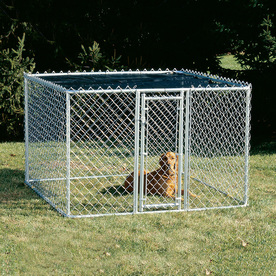Shop Midwest Pets 6 Ft X 6 Ft X 4 Ft Outdoor Dog Kennel Gates At