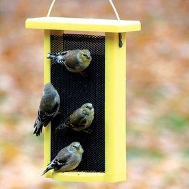 shop birds choice recycled plastic bird feeder at. Black Bedroom Furniture Sets. Home Design Ideas