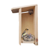 Coveside Conservation 6-in W x 12.5-in H x 8.5-in D Unfinished Pine Bird House