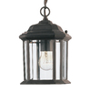 Sea Gull Lighting Kent 10.5-in Black Outdoor Pendant Light