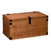 Boston Loft Furnishings Theobalt Autumn Oak Trunk (Composite) Rectangular Coffee Table