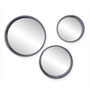 Holly & Martin Daws Cool Gray Polished Round Framed Wall Mirror