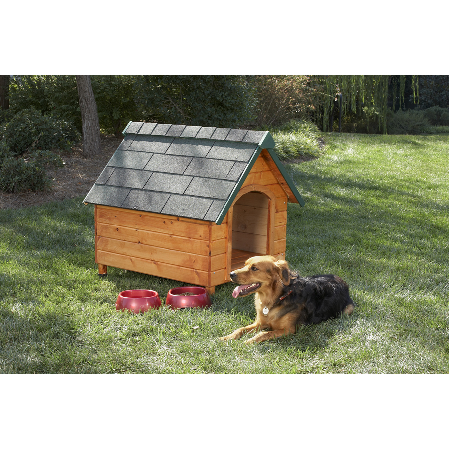 Shop companion gear wooden dog house at lowescom for Dog houses sold at lowes