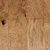 Pergo 0.375-in Oak Locking Hardwood Flooring Sample (Antique Natural)
