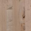 Pergo 0.476-in Maple Engineered Hardwood Flooring Sample (Sterling)