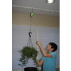 Plant Caddie 8-in Modern Green Plant Hook