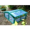 Genesis 3.4-ft L x 3-ft W x 1.7-ft H Plastic Greenhouse