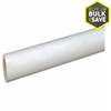 Charlotte Pipe 1-in x 2-ft 450-PSI Schedule 40 PVC Pipe
