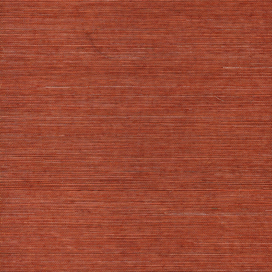 shop allen roth orange grasscloth unpasted textured