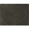 STAINMASTER PetProtect Purebred Breed Textured Carpet