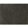 STAINMASTER PetProtect Pedigree Breed Textured Carpet