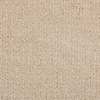 STAINMASTER Sardi Gardenia Beach Cut and Loop Indoor Carpet