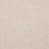 STAINMASTER PetProtect Sardi Soft Cameo Cut and Loop Carpet