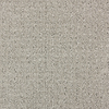 STAINMASTER Sardi North American Grey Cut and Loop Indoor Carpet