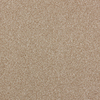STAINMASTER PetProtect Wembley Light Chocolate Saxony Indoor Carpet