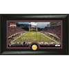 The Highland Mint 20-in W x 12-in H Mississippi State University Stadium Bronze Coin Panoramic Photo Mint Limited Editions