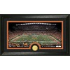 The Highland Mint 20-in W x 12-in H Cincinnati Bengals Stadium Bronze Coin Panoramic Photo Mint Limited Editions